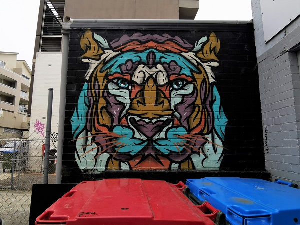 Manly Street Art by Kamion