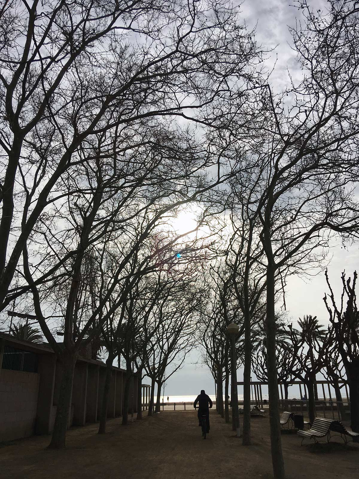 Llegando a la playa de Sant Adrià