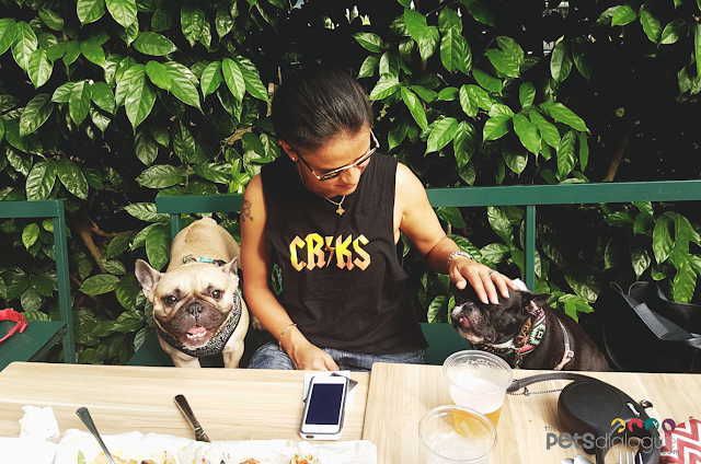 Pug life Singapore