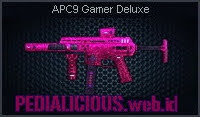APC9 Gamer Deluxe