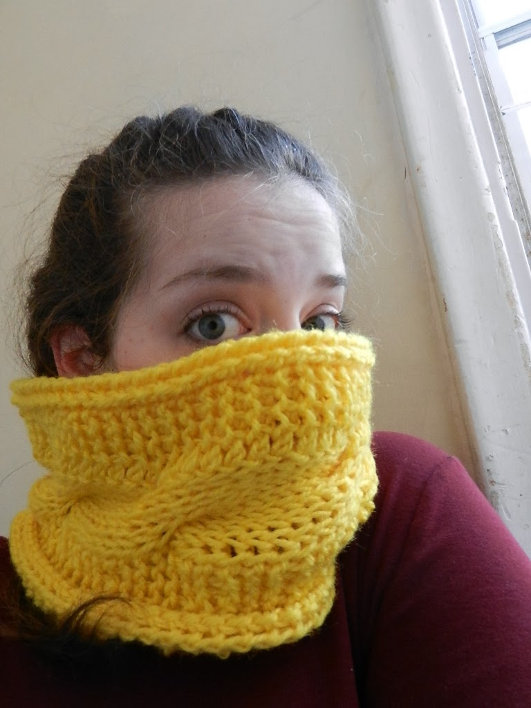 Designs by Diligence: Super Chunky Twisty Neck Warmer