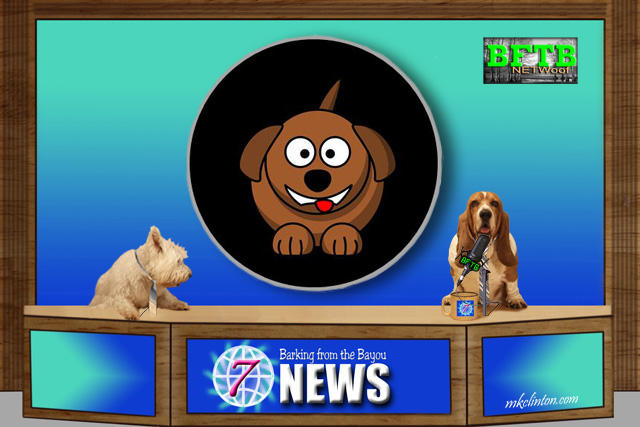 BFTB NETWoof News reports on pup getting stuck in pipe