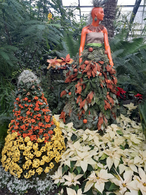 Allan Gardens Conservatory 2019 Winter Flower Show nineteen by garden muses--not another Toronto gardening blog