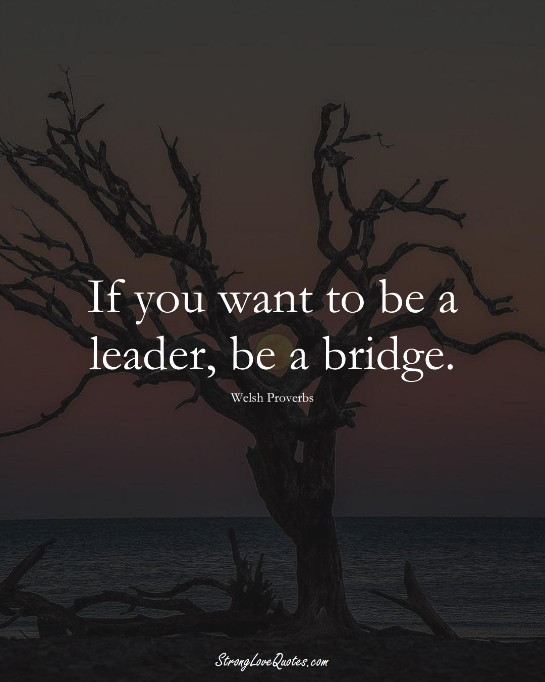 If you want to be a leader, be a bridge. (Welsh Sayings);  #EuropeanSayings