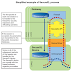 SecureXL Process Details