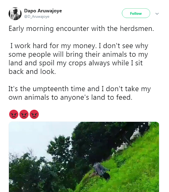 Nigerian Man Cries Out After Herdsmen Brought Their Cattle To His Land