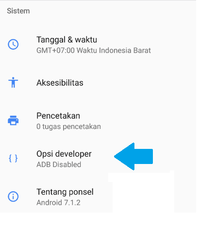 Cara melihat developer options