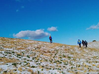 Campo di soia ghiacciato verso la collinaccia