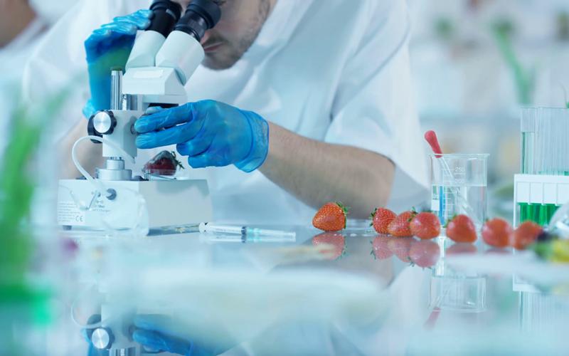 Biyoteknoloji ile açlık sorunu kalıcı olarak çözülebilir