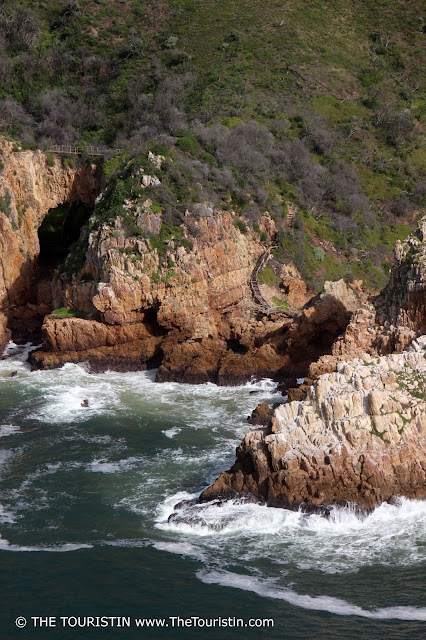 knysna lagoon south africa featherbed rocks walk reserve the touristin dorothee lefering