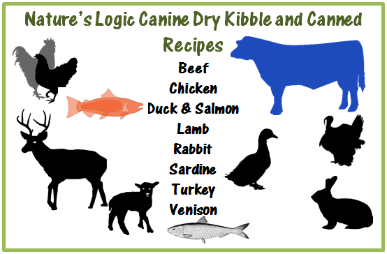 Infographic of flavors of Nature's Logic dog food