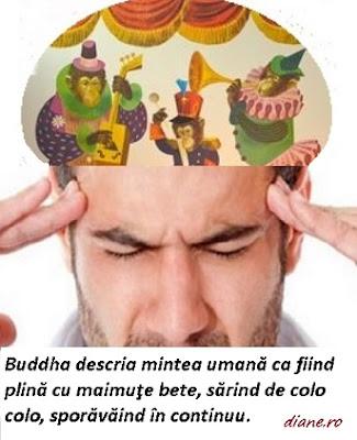 Buddha descria mintea umană ca fiind plină cu maimuţe bete, sărind de colo colo, sporăvăind în continuu