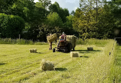 tractor with wagon loaded with hay in field
