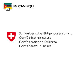 Saiba como funciona o recrutamento para trabalhar na Embaixada da Suíça em Moçambique. Novas vagas de emprego. Enviar candidatura online!