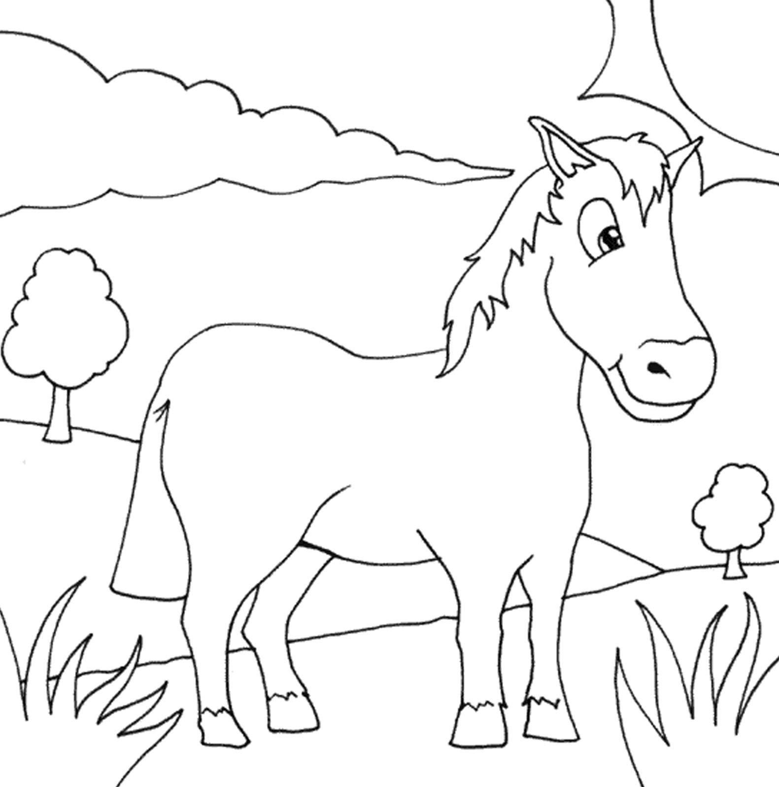 Kumpulan Gambar Sketsa Hewan Kuda