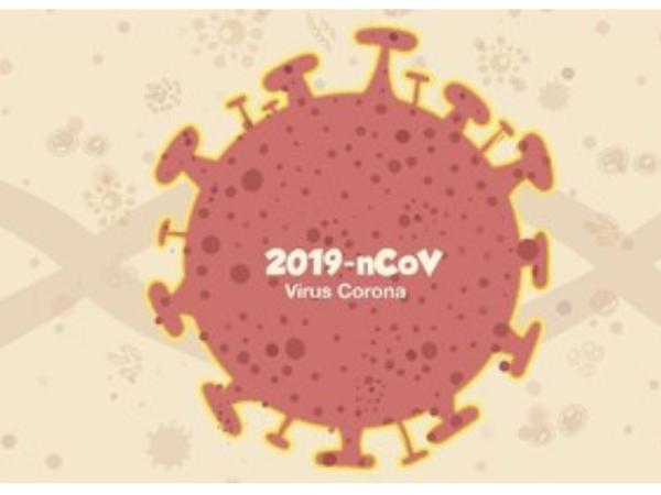 Virus Corona China, Bagaimana kita menghadapinya?