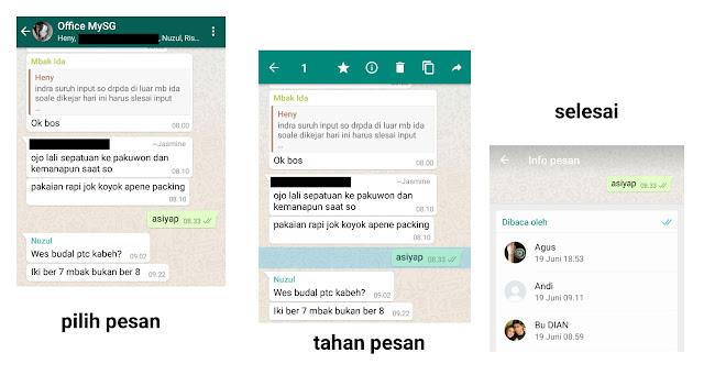 melihat pesan dibaca di grup whatsapp
