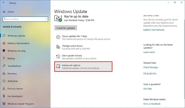 windows_update_advanced_options_selected