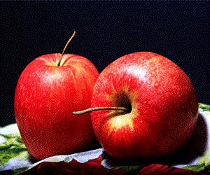 manfaat-kulit-apple-untuk-kesehatan-tantirasmawati