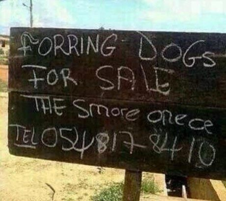 LMAO! This Signpost Will Make You Weep In Laughter