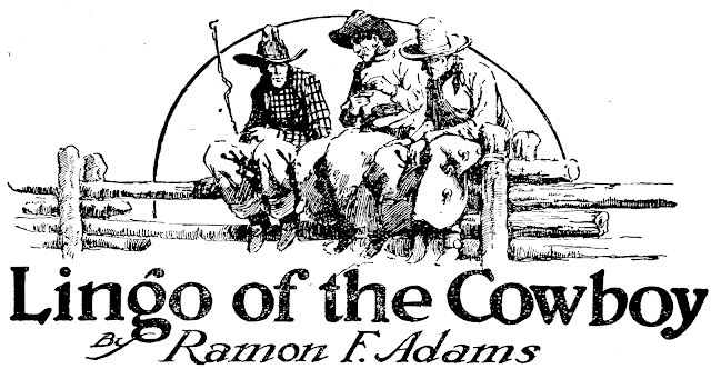 Lingo of the cowboy  - Ramon F. Adams in Western Story Magazine December 15, 1923