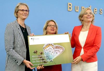 presentacion-programa-protección-insectos-Berlin