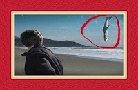 Airplane Crash Dream Meaning and Interpretations – DREAMLAND