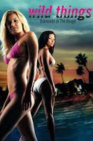 (18+) Wild Things 3 Diamonds in the Rough (2005) Dual Audio Hindi 720p HDRip