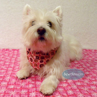 Chocolate Truffle Valentine Dog Bandana