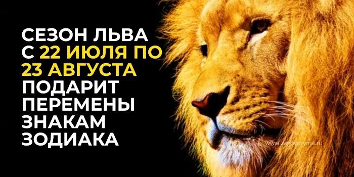 Каким знакам Зодиака сезон Льва с 22 ИЮЛЯ по 23 АВГУСТА подарит перемены и незабываемые моменты жизни