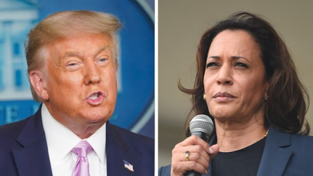 New Poll Reveals Who Would Win Between Trump And Kamala Harris in 2024