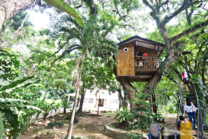 What to See in Zamboanga City Pasonanca Park