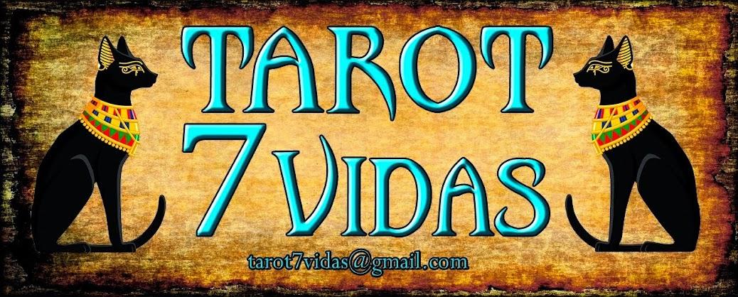 blog tarot 7 vidas
