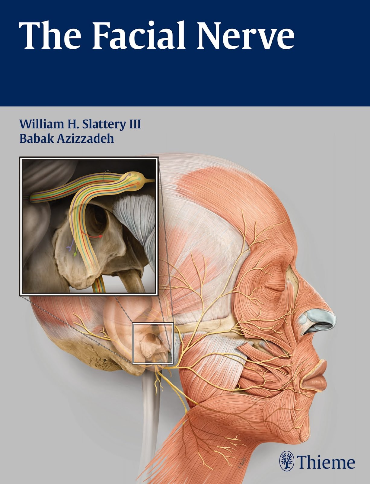 The facial nerve 2nd edition