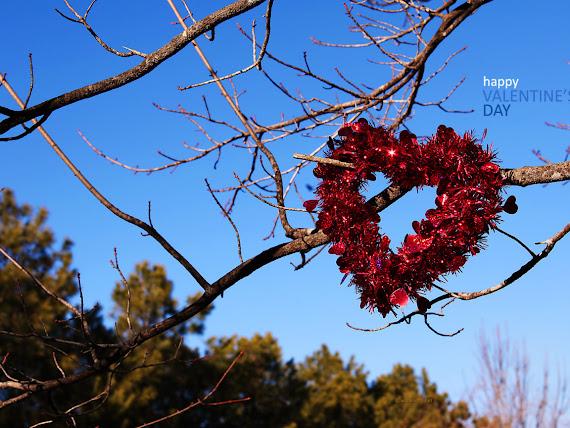 Happy Valentines Day download besplatne pozadine za desktop 1152x864 slike ecard čestitke