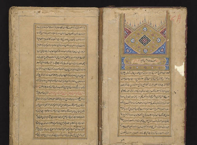 "Discover the Persian 11th Century Canon of Medicine, ""The Most Famous Medical Textbook Ever Written"""