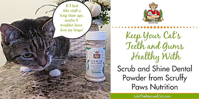 Scruffy Paws Nutrition