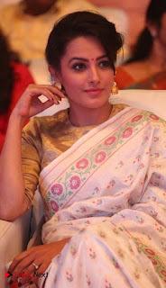 Actress Anita Hassanandani Pictures in Saree at Manalo Okkadu Audio Launch  0008.jpg