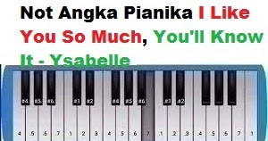 Not Angka Pianika I Like You So Much You Ll Know It Ysabelle Calonpintar Com