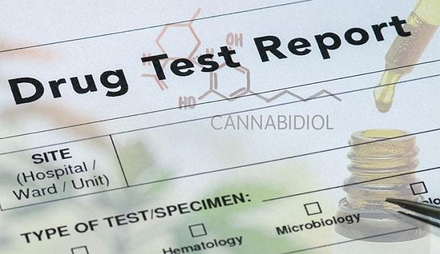 will cbd oil show up on a drug test positive cannabidiol thc
