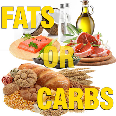 Understanding fats and carbs