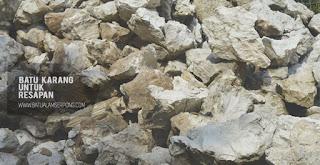 batu karang putih di jakarta