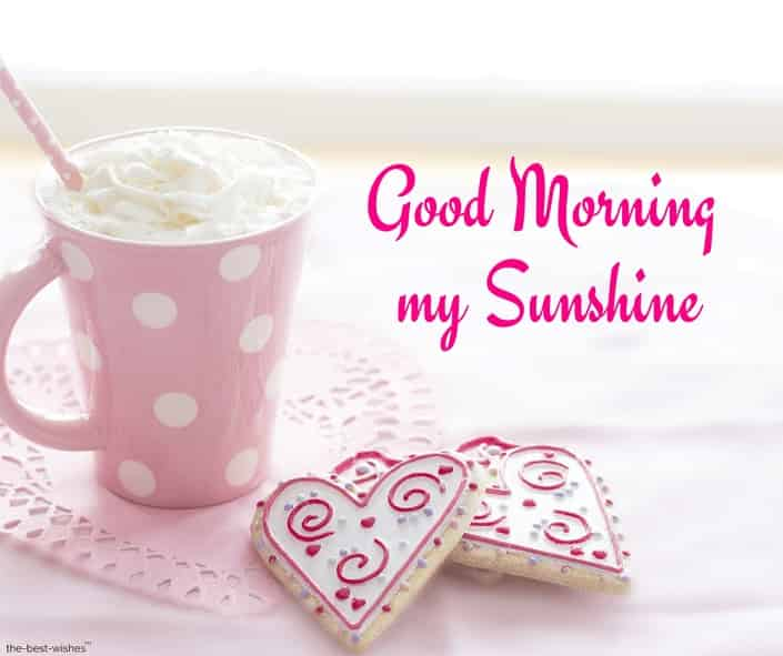 good morning my sunshine pic