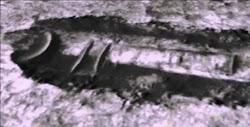 Την εικόνα που αποκτήθηκε με το όργανο HiRISE τοποθετημένο στον ανιχνευτή MRO και φαίνεται να απεικονίζει ένα δισκοειδές αντικείμενο Τι είνα...
