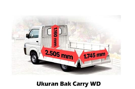 ukuran-bak-carry-wd