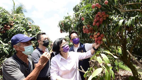彰化荔枝產季將到來 挺農友買彰化優鮮