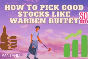 How to pick good stocks like warren buffet?