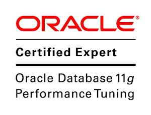 Oracle Database 11g Performance Tuning Expert