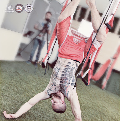 aerial yoga, aerial silks, aerial danza, acrobatic yoga, aeroyoga, aeropilates, aerial pilates, accreditation, diploma, teacher training, wellness, health, beauty, exercice, professional training, coach, coaching, instructor, fitness, aero, airyoga