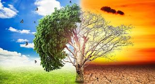 Continúa abierta convocatoria nacional Fondo para el #CambioClimático